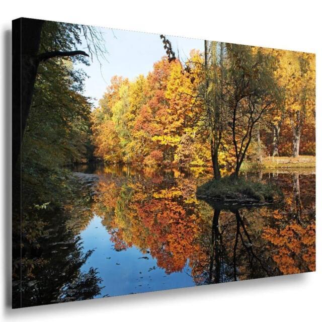 Herbst & Wald Leinwandbild AK Art Bilder Mehrfarbig Wandbild kunstdruck Wanddeko