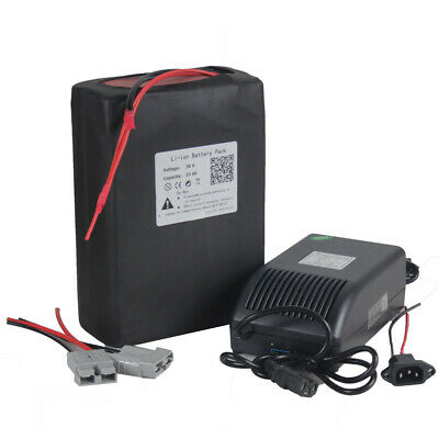 BMS 36V 25Ah Lithium Li-ion Battery Pack For 750W 1000W E-Bike Electric Scooter