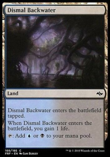 4x ACQUITRINO TETRO DISMAL BACKWATER Magic FRF Mint