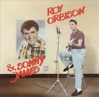 RCA Sessions by Roy Orbison (CD, Jul-1987, Bear Family Records (Germany))