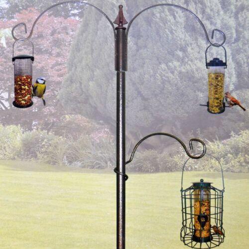 GREEN Jem Premium Uccello Selvatico Alimentazione Stazione per incoraggiare gli uccelli al tuo giardino