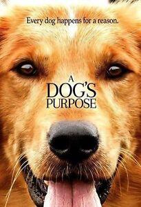A Dog S Purpose Similar Movies
