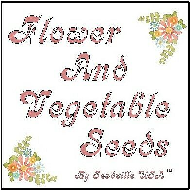 FLOWER AND VEGETABLE SEEDS