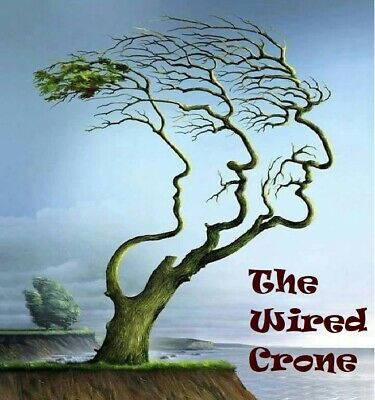 The Wired Crone