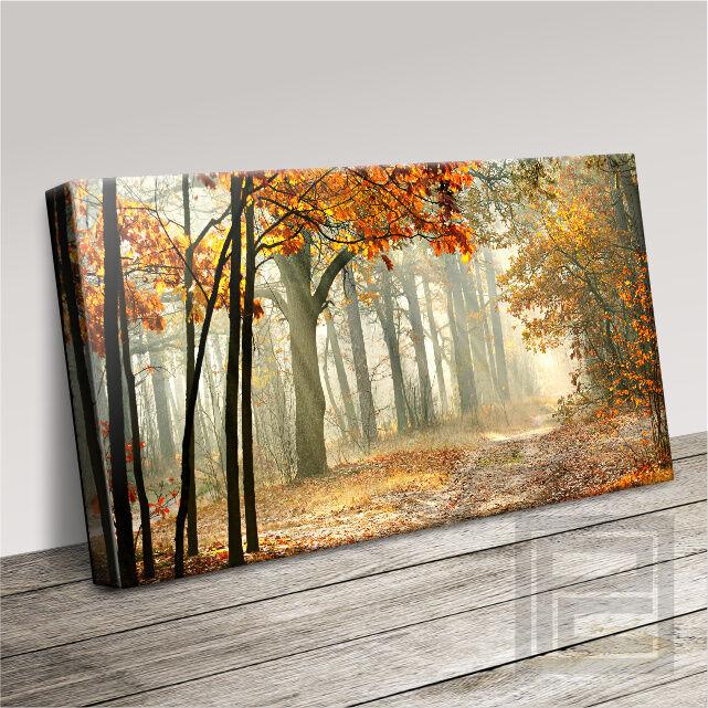 boisED FOREST CALM LANDSCAPE SCENE MODERN toile PRINT PICTURE UPGRADE 120x56cm