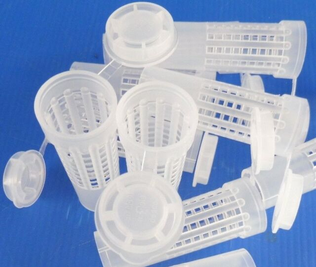 Beekeeping - 100 plastic hair roller queen bee cages (use with Nicot system)