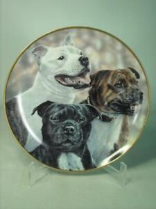 Danbury Mint PLAYFUL TRIO Plate Staffordshire Bull Terrier Paul Doyle