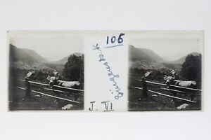 Suisse Bürgenstock Foto Stereo T2L9n53 Placca Da Lente Vintage
