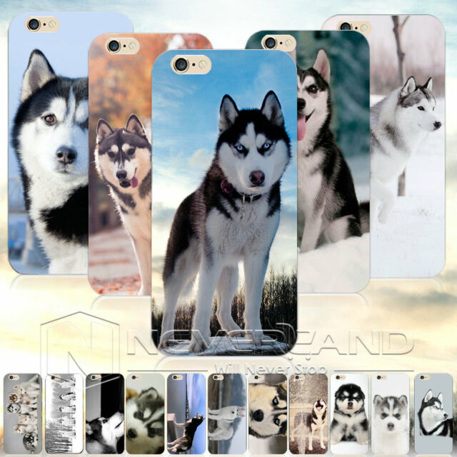 Animal Pattern Funny Siberian Husky TPU Phone Case Cover For iPhone SE/6/Plus