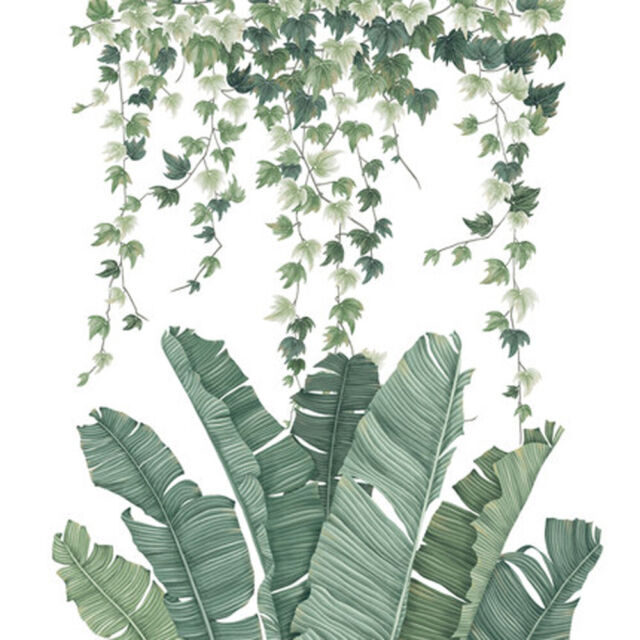 Tropical Green Plant Leaves Sticker Art Print Room Wall No Fading Detachable For Sale Online Ebay Large leaf plants not only turn heads and make statements, but they are also read our plant stylists tips for how to style with statement plants, how to care for tropical indoor plants, and which tropical. tropical leaves green plant wall sticker vinyl decal living room art mural decor