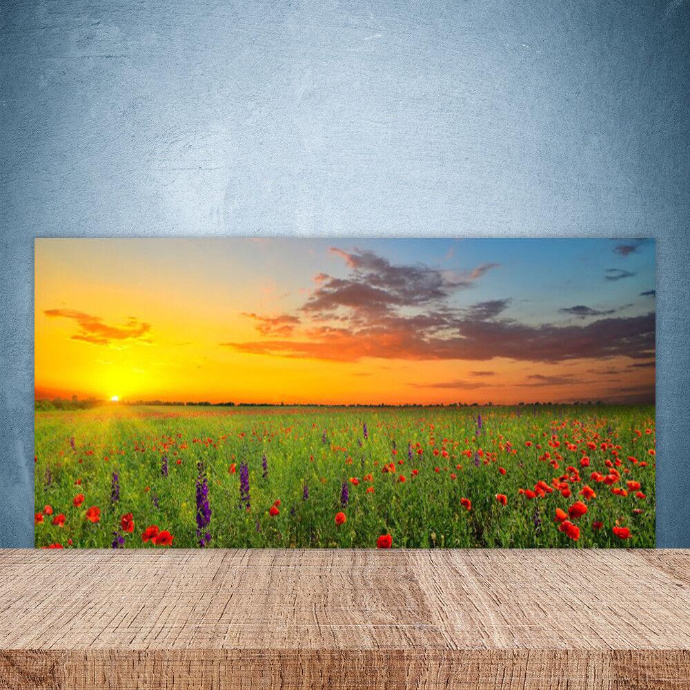 Crédence de cuisine en verre Panneau Paroi 100x50 Nature Fleurs Prairie Soleil