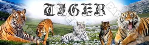 "Tigers Poster 30/"" x 8.5/"" Personalized Custom Name Painting Printing"