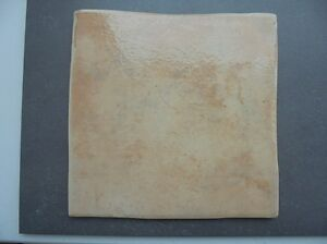 PROVENZALE-ORAN-GLAZED-20-X-20cm-WALL-FLOOR-TILES-BOX-OF-35-TILES