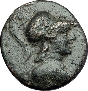 APAMEIA-PHRYGIA-88BC-Athena-Gemini-Caps-Eagle-Original-Ancient-Greek-Coin-i61135