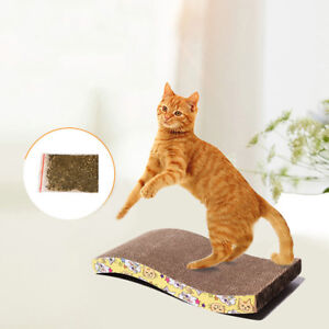 LC-Animal-Chat-a-gratter-bord-avec-herbe-a-grattoir-interactif-entrainement