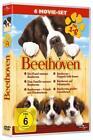 Beethoven - 6 Movie-Set (2011)