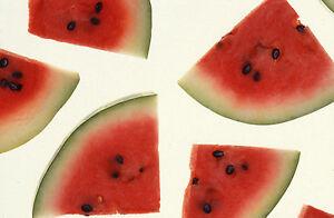 1-OZ-Organic-Crimson-Sweet-Watermelon-Seeds-560ct-WHOLESALE-Fun-Sweet-Fruit
