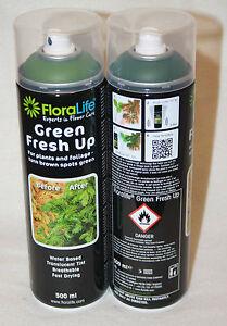 FLORALIFE /® DARK GREEN FRESH UP