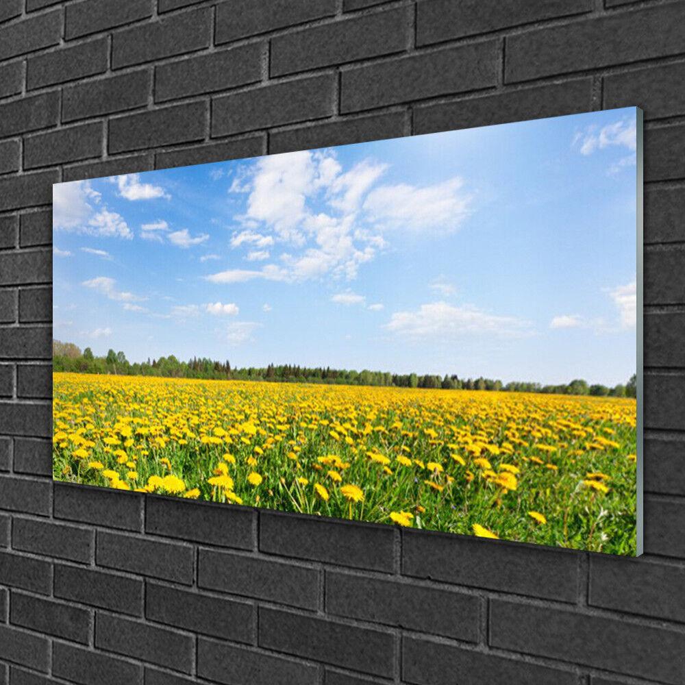 Tableau sur verre Image Impression 100x50 Paysage Pissenlit Prairie Fleurie