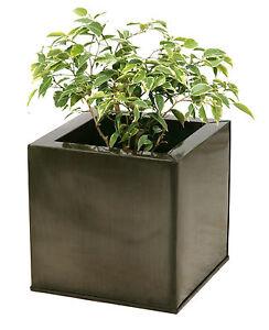 la imagen se est cargando macetero titanio maceta macetas grandes jardin terraza planta - Macetas Grandes