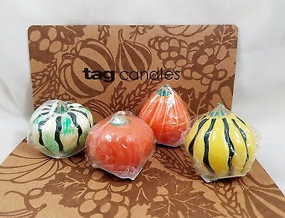 Mini Harvest Pumpkin & Gourd Candles set of 4 by Tag New Thanksgiving Halloween