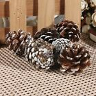 30/60x Christmas Pine Cones 6x5.5cm Wreath Florist Fir Wire Tree Decoration Xmas