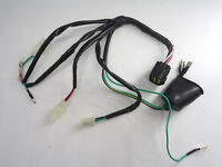 Lifan 250cc 150cc Electric Wireloom Wire Wiring Harness For Scooter Us Stock Ma