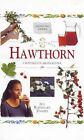 Hawthorn: Crataegus Monogyna by Jill Davies (Hardback, 2000)