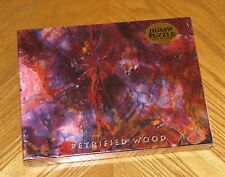 Petrified Wood Puzzle Cross Section Chinle Formation Forest National Park AZ