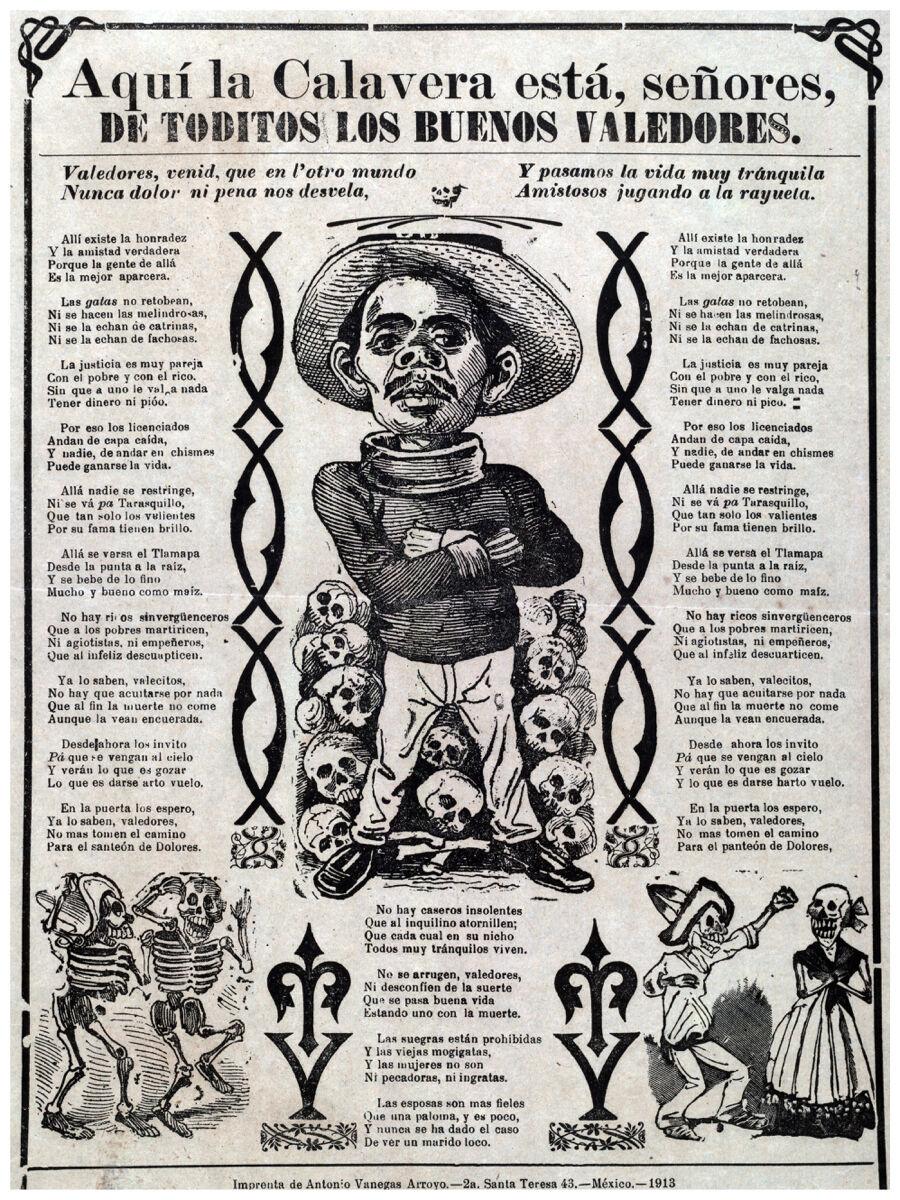 16x20  CANVAS Decor.Room art print.Mexico Catrina funny poems.6011