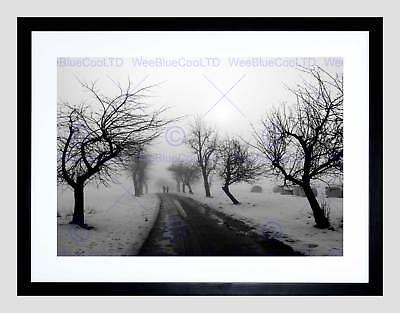NATURE LANDSCAPE PHOTO BLACK WHITE SNOW WINTER TREE POSTER ART PRINT BB1462B