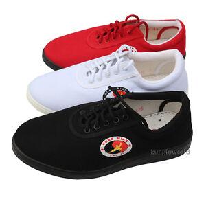 7dc365536 Professional Kung fu Tai Chi Shoes Martial arts Wushu Training ...