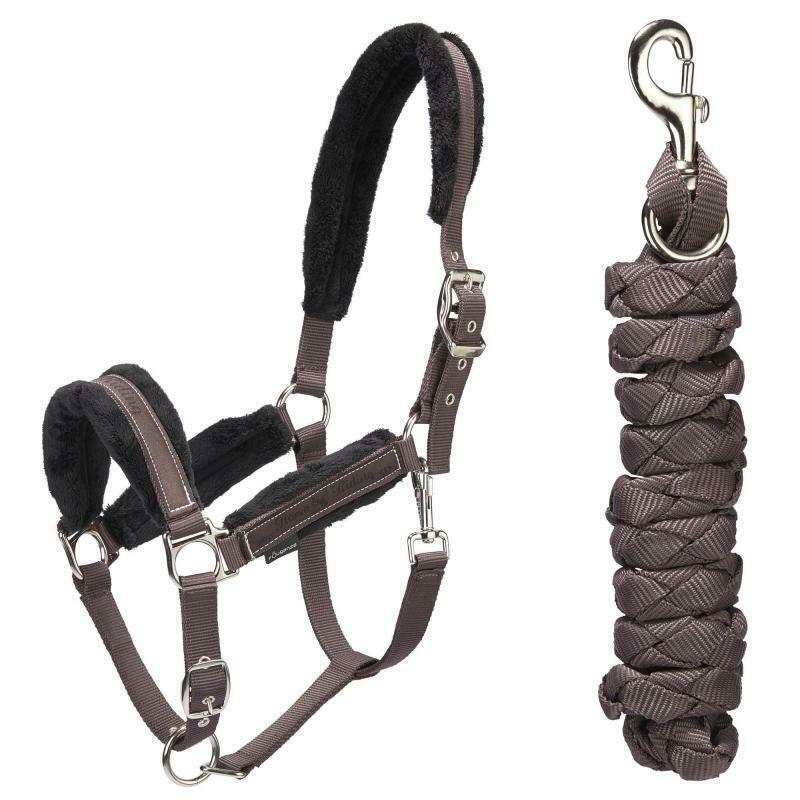 BEST PRICE Winner Horse Riding Halter + Leadrope Set for Horse and Pony - Brown