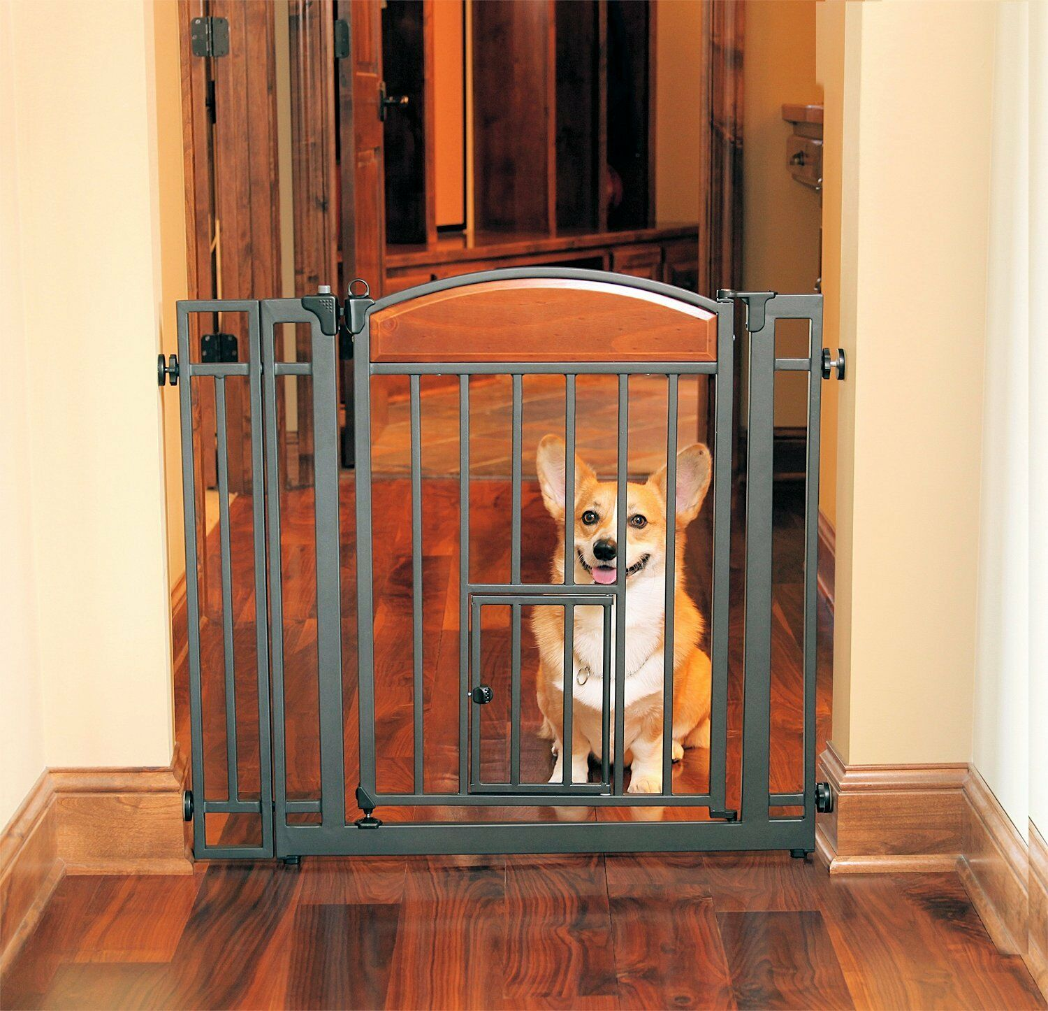 Carlson Design Studio Metal Walk-Thru Gate with Pet Door 3030 for dog