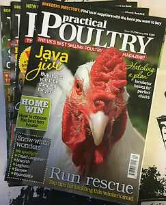 Practical-Poultry-Magazine-Chicken-Ducks-Game-Goose-Quail-Rabbits-133-136-2015