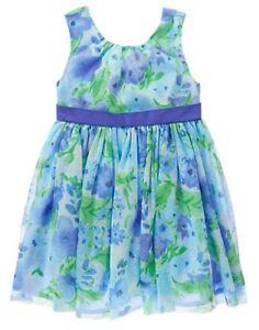 NWT Gymboree Family Brunch Floral  Dress Toddler Girls Easter ManySizes