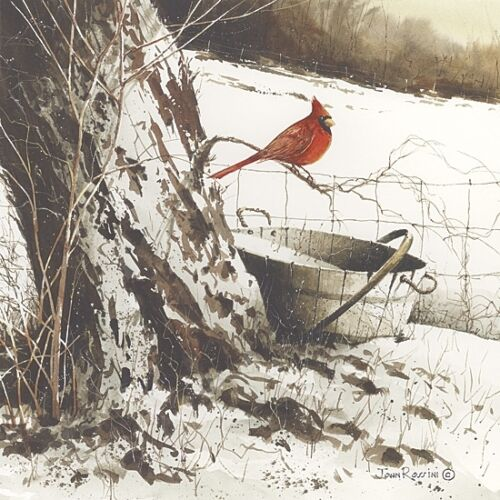 Country Cardinal JR138 Art Print Framed or Plaque by John Rossini