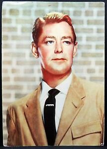 Alan-Ladd-Ak-Photo-Postcard-Photo-Postcard-Lot-Ma-1566