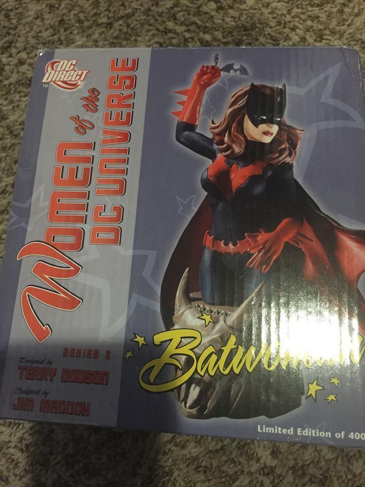 Dc - universum batwoman frauen des dc - universum box - pleite in seltenen jim maddox