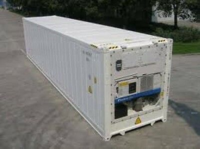 8x40ft Refrigerated Shipping Container