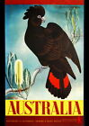 "AUSTRALIA COCKATOO BANKSIA TRAVEL REPRO A4 CANVAS PRINT POSTER 11.4"" x 8.3"""