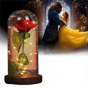 Beauty-and-The-Beast-Red-Rose-Glass-Lamp-Dome-Valentine-LED-Lighted-Gift