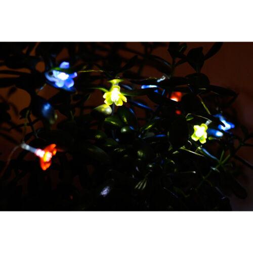 Striscia 10 LED Multicolor Fiori 102 cm Decorazione Piante Giardino Arti Casa