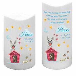 LED Kunststoff Kerze Weiß für Tiere Hund mit Haus