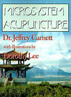 Microsystem Acupuncture by Dr Jeffrey Carnett (Paperback / softback, 2000)