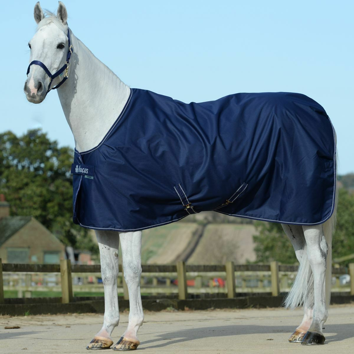 Bucas Irish Extra 300g Stable Rug Coat