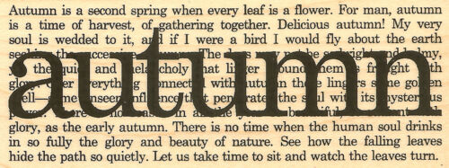 Autumn Collage Saying Verse Wood Mounted Rubber Stamp Impression Obsession D3938