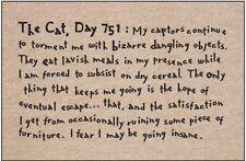 "Cat Diary Funny Mat - ""The Cat, Day 751"" - 18 x 27 Humorous Doormat"
