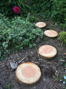 Image Is Loading Four Wooden Garden Stepping Stones Rustic Logs Slices