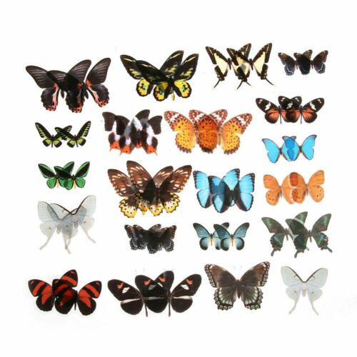 40Pcs//Set DIY Butterfly Stickers Diary Label Scrapbooking Stationery Sticker